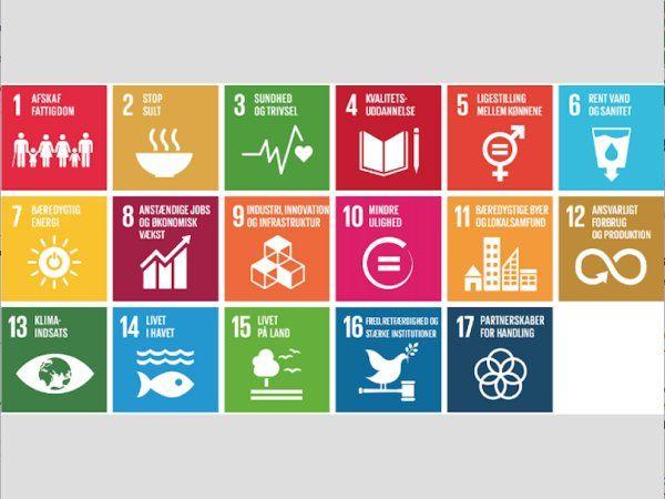 Under Next Generation P4G vil 15 tech-startups fra Danmark, Sydkorea, Kenya og Etiopien præsentere deres bæredygtige løsninger inden for vand, energi, fødevarer, cirkulær økonomi og bæredygtige byer, fremhæver DTU.