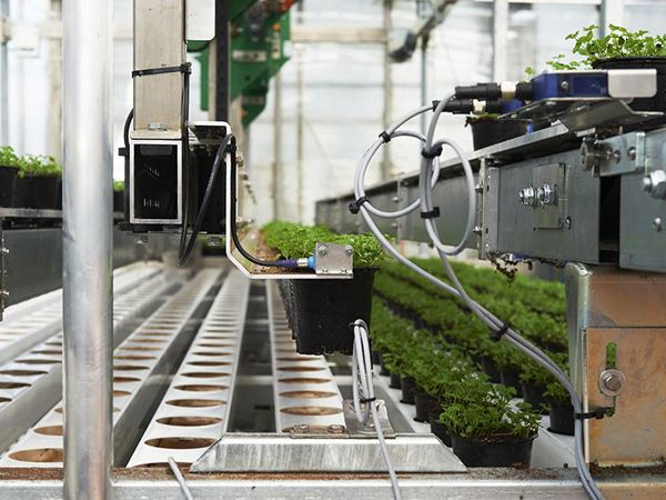 Integos automationsafdeling bistår Viemose DGS i deres produktion af væksthuse.