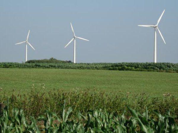 Den mangeårige konference Vindtræf afholdes i efteråret. Programmet byder blandt andet på debat om vindenergiens rolle i klimapolitikken og på vindens værdi og merbrug til eksempelvis PtX. Konferencen afholdes 5. november hos Vestas i Aarhus.