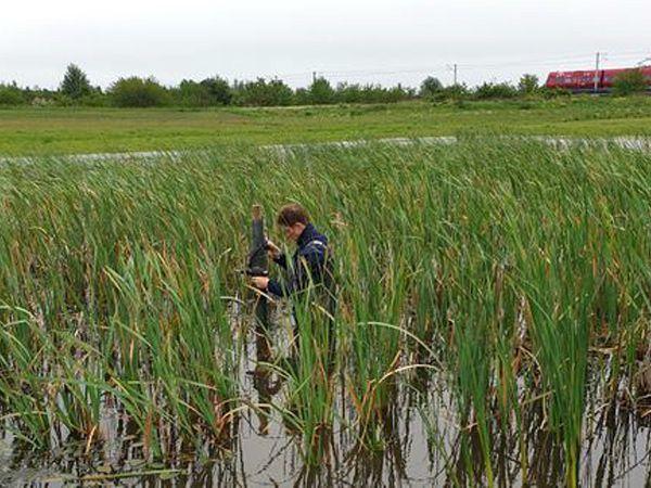 En vandstandslogger bliver her installeret i en sø i projektområdet i Egedal.
