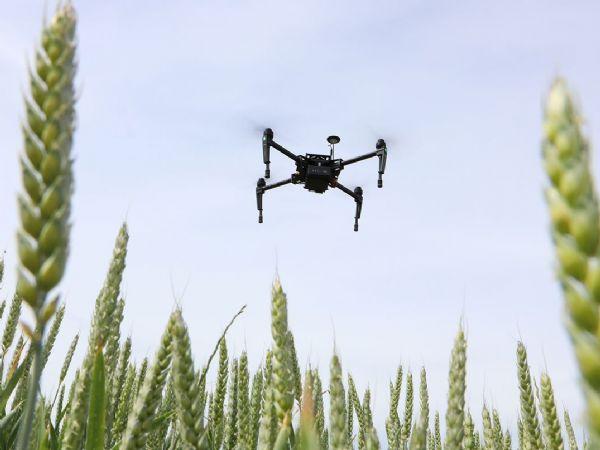 Overvågning af marker med sensorer og droner kan gøre landbrug og fødevarefremstilling mere klimaneutral, påpeges det i forbindelse med AgROBOfood-projektet.