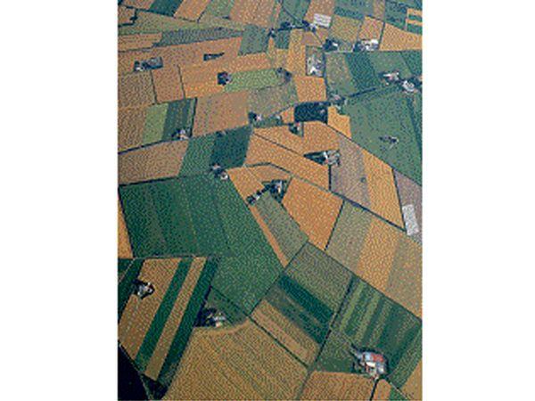 Landbrugets øget brug af teknologi, løfter erhvervet, noterer Danmarks Statistik.