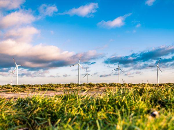 Vindmøller indgår i den grønne omstilling, påpeger Danmarks Frie Forskningsfond. (Foto: Karsten Würth, Unsplash)