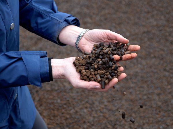 Black Pellets er et restprodukt efter produktion af ethanol. Pillerne har en høj brændværdi, fremhæver Verdo. (Foto: Verdo)