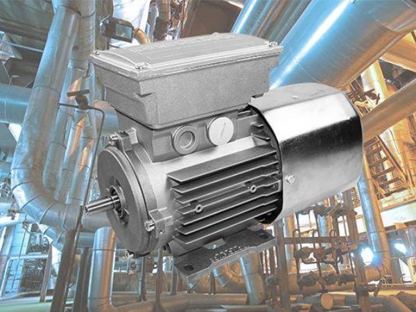 Brd. Klee er lagerførende i Bonfiglioli, og herunder også producentens bremsemotorer, som den aktuelle, rustfaste IP55 DC-bremse.