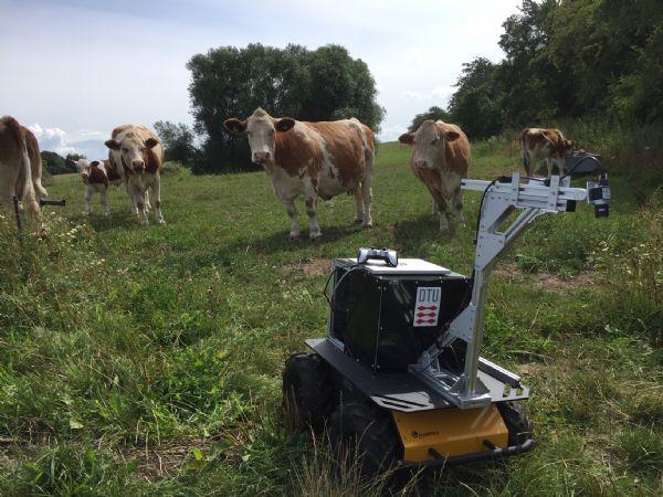 Den lille robot kan sættes ind på de økologiske marker, og fjerne ukrudt, påpeger Ronja Güldenring, DTU Elektro, der står for projektet.  (Foto: DTU)
