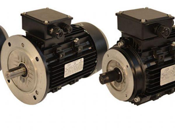 Eegholm slår aktuelt et slag for elmotorers energieffektivitet.